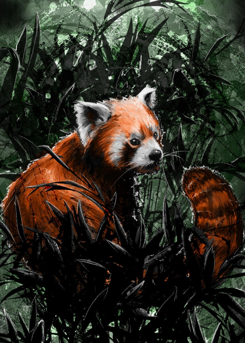 """A Red Panda"". Enjoy and Cheers! Gallery quality print on thick 45cm / 32cm metal plate. Each Displate print verified by the Production Master. Signature and hologram added to the back of each plate for added authenticity & collectors value. Magnetic mounting system included."
