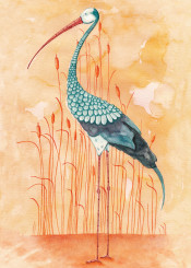 stork crane bird animal reed exotic illustration colorful watercolor nature landscape orange turquoise