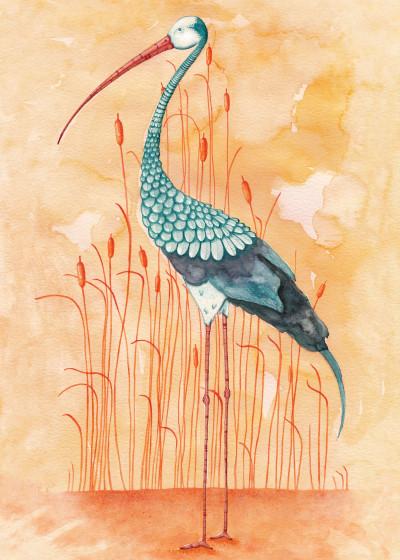 Timone Art Timone Watercolors   Displate Prints on Steel