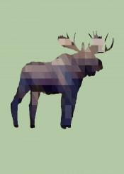 moose deer elk animal wildlife outdoors geometric squares triangles geometrical