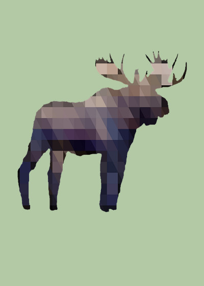 Arts and Herbs Wildlife   Displate Prints on Steel