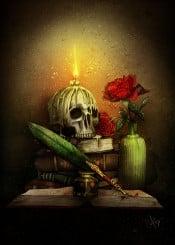 books soul skull