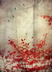 red hazy painterly impressionistic melancholy leaves mood birds weather winter textured photograph silhouettes misty