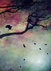 birds colors painting watercolors backlight tree branches