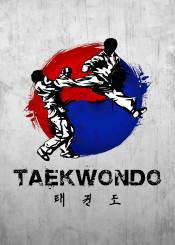 taekwondo warrior fighter korea wtf itf fighting kick jump kicking korean