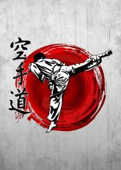 karate karatedo kata kumite kihon warrior fighter kick japan japanese martial art artist fight shotokan shitoryu wadoryu gojuryu kyokushin punch mma fist ufc