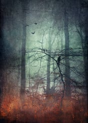 forest mod leaves landscape mystery textured misty bird silhouettes blue green surreal