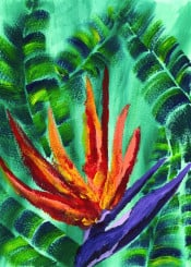 flower plant crane los angeles official orange yellow violet green elaboate strelitzia perennial native south africa banana leaf crown tropical tropics tropicana nature brushstrokes acrylic painting vibrant colorful artistic creative handpainted handdrawn bird paradise fan