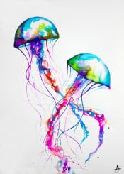 jellyfish marinelife color animals ink watercolor