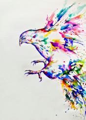 eagle bird prey descent color ink watercolor painting