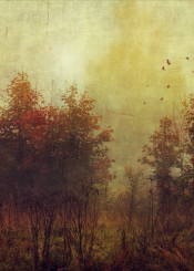 fall painterly textured yellow orange birds trees mood atmosphere leaves misty outdoor nature backlight silhuettes serene calm