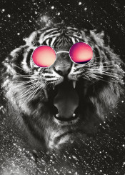 tiger wild beautiful animals nature lovely sweet sunglasses glasses colorful colors art swag big cat roar roaring abstract space galaxy