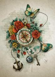 compass roses butterflies