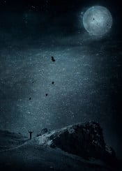 monochrome surreal moon ocean landscape rock birds moody atmosphere nightscape blue mystical