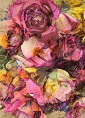 flora flower flowers botanical rose roses