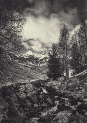 black white vintage texture italy creek mountains clouds rocks water monochrome fineart alps trees