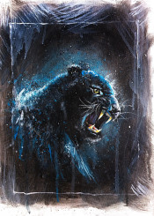 black panther animals wild emilianomorciano cool design snarl angry