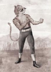 tiger vintage box boxing old sullivan animal