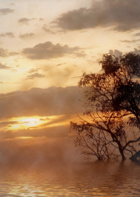 sunset tranquil clouds atmospheric liquid silhouette nature trees ambience chill