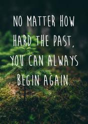 quotes buddha nature wisdom