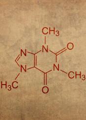 caffeine molecule coffee student dorm nerd science chemistry learn school professor education physics formula chemical