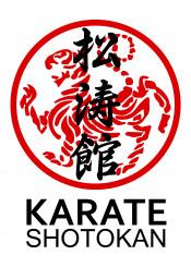karate shotokan kata kumite warrior fighter kihon japanese martial art funakoshi