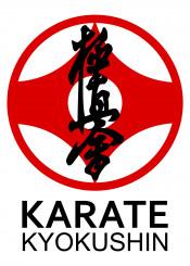 karate kyokushin warrior fighter martial arts martialarts japanese kumite kihon kata