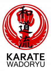 wadoryu karate martialarts martial arts japanese warrior fighter kata kihon kumite