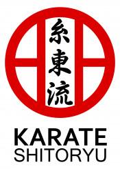 shitoryu karate warrior fighter martial arts martialarts japanese kata kihon kumite