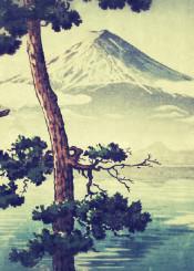 mountain mount fuji japan white snow tree pine green brown blue lake clouds nature