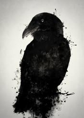 raven crow bird animal prey wildlife nature outdoors mythology norse pagan viking photomanipulation spatter ink oden odin hugin munin huginn muninn