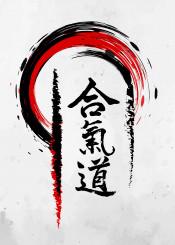 aikido budo bushido martial arts artist japan japanese throw energy flow brush martialarts ki do path
