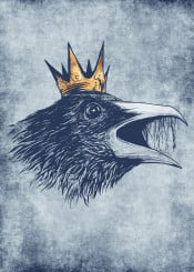 crow raven crown king animal bird retro fantasy