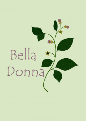 deadly nightshade belladonna botanical wicca witchcraft potion poisonous herbal plant flower beautiful bella donna atropa