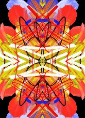 flower native indian abstract design red blue yellow light bright bird spiritual chakra urban street unique
