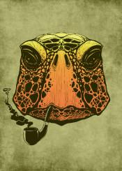 turtle tortuga pipe animal strange reptile slow calm smoke smoking time vintage grungy drawing ink cool
