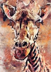 giraffe animal animals wild watercolor painting