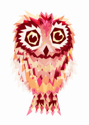owl wild red cute
