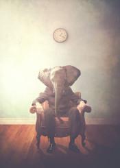 elephant animal clock office wood dreamy surreal man chair time victorian modern officeman