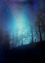 blue night surreal moody trees mystical hill silhouettes stars birds light texture darkness solitude dreamy