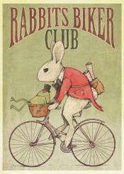 rabbit bunny rabbits bunnies animal bike bicycle old retro