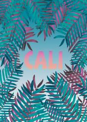 palms cali california bohemian botanical