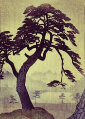 tree japan japanese vintage ancient pine hill lake brown black green yellow