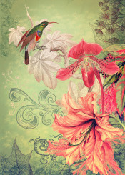 song garden collage antique coral red orange green flowers hummingbird orchid bird tropical victorian textured decorative wall leaves classic