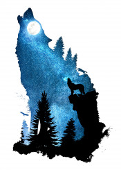 designstudio dverissimo wolf dog howling wind howl night space stars moon moonlight silhouette animal animalia forest wild rock cliff digital nature illustration photo sky landscape