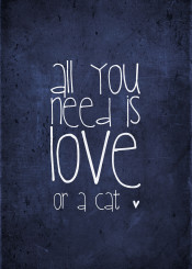 all you need is love or cat catlover cats crazy lady blue navy indigo quote word words allyouneedislove kitty kitten pet petlove monika monikastrigel strigel