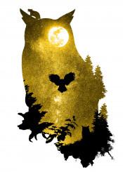 designstudio dverissimo owl animal animalia night space stars yellow moon wings fly dark mouse trees sky flying silhouette illustration photo digital bird song hoot melancholy sad