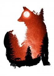 designstudio dverissimo fox foxy animal rabbit trees forest photo night space stars moon swaying red orange silhouette dark hunt hunting landscape nature digital illustration animalia