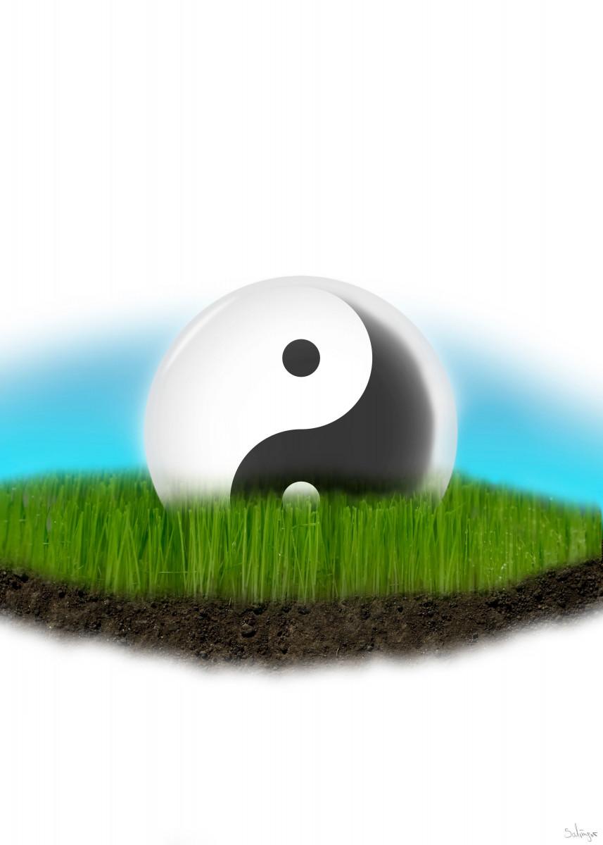Ying Yang glas ball in meadow.