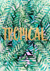 tropical typography leaves bohemian